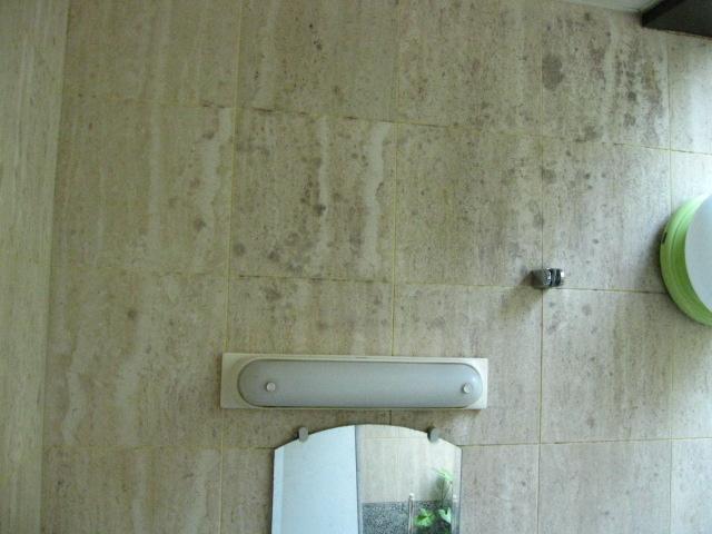 石のお風呂の洗浄(大理石・御影石)のサムネイル