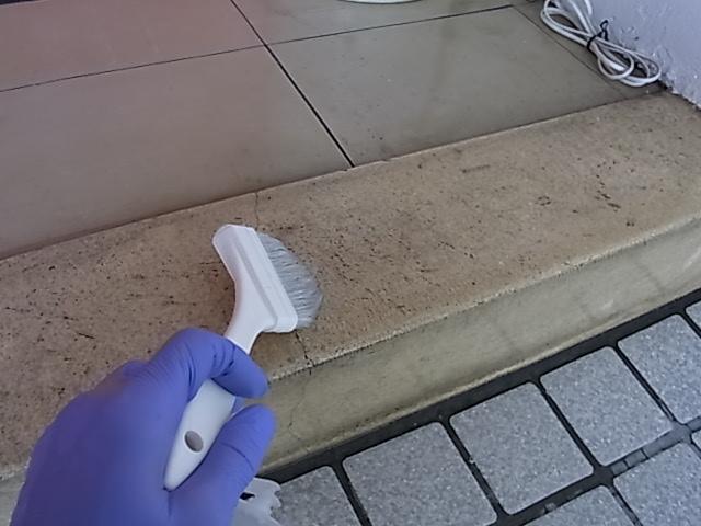 テラゾーの玄関框(かまち)洗浄のサムネイル