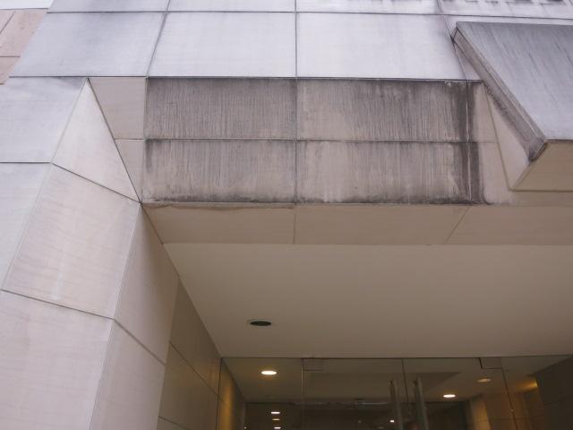 ライムストーン(モカクリーム))の外構エントランス壁に黒ずんだカビがのサムネイル