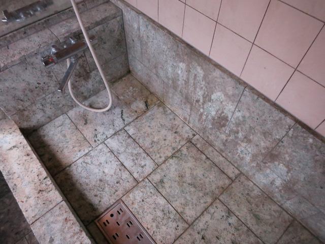 伊豆石等凝灰岩のお風呂にはカビの発生はつきもののサムネイル