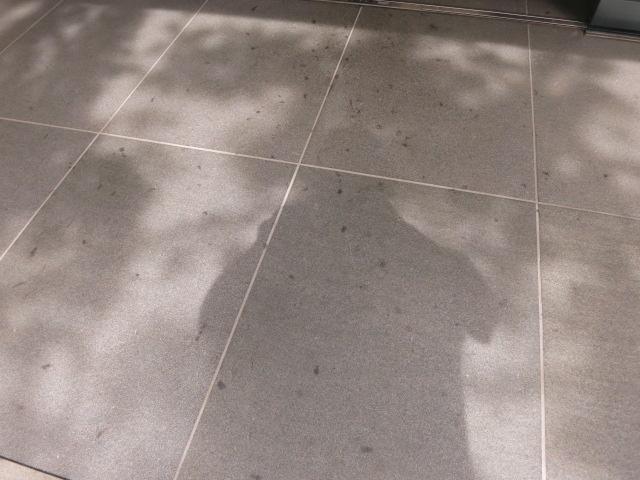 黒御影石バーナーに木の実のドットシミは目立ちますのサムネイル