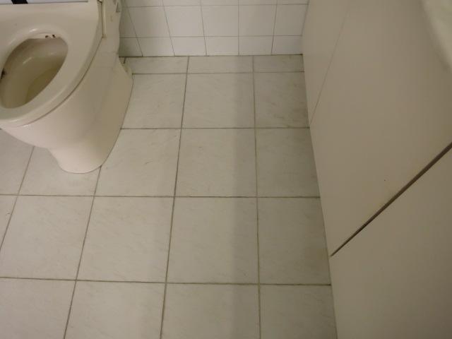 大理石トイレ床の茶ジミ除去のサムネイル