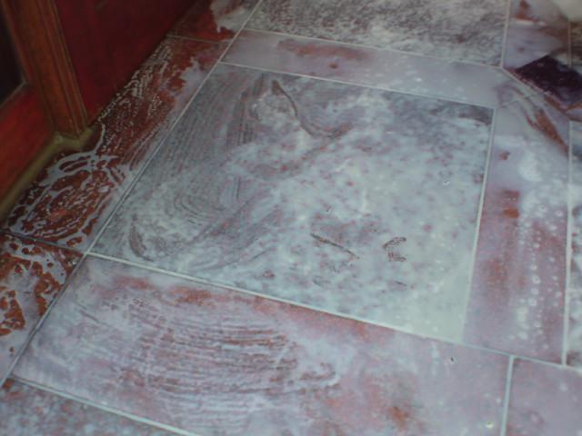 ワックスによる黄変の復元のサムネイル