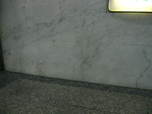 大理石(ビアンコ)のサビ抜きのサムネイル